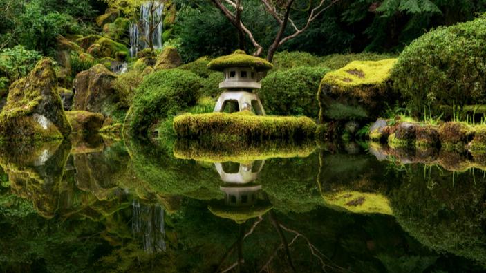 ÉPISODE 8 : Méditation de l'amour bienveillant